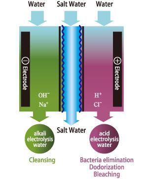 Electrolyzed water