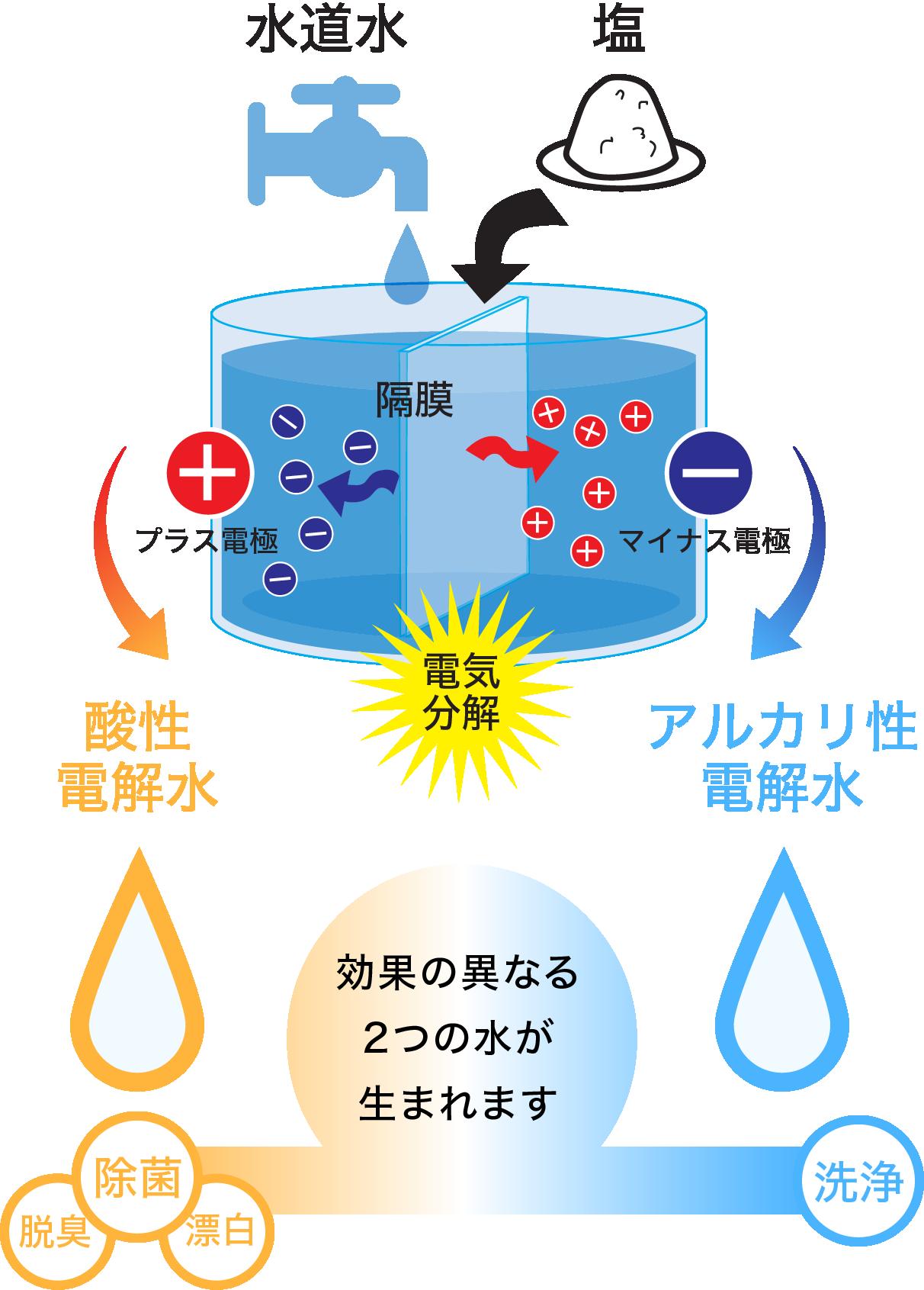 酸性 電解 水